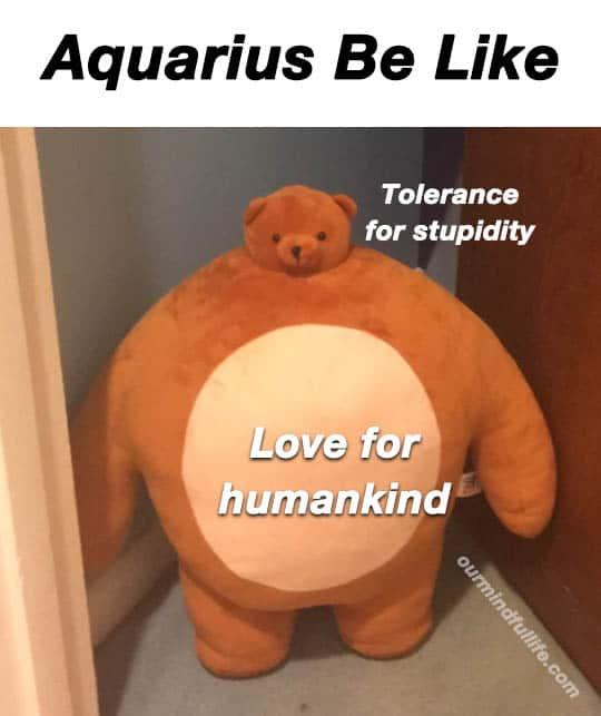 Aquarius Memes (List)