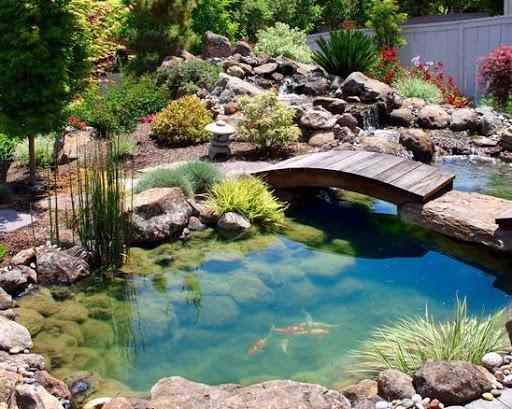 養魚池のアイデア