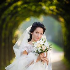 Wedding photographer Katya Shelest (Shelest). Photo of 11.01.2015