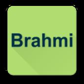 Brahmi Net