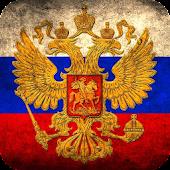 Русский язык. Толковый словарь