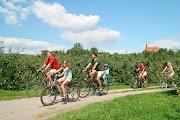 Велодорожки отделены от автодорог