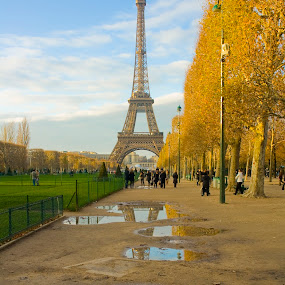 After a shower by Victor Mukherjee - Travel Locations Landmarks ( water, eiffel tower, paris, europe, park, trees, reflections, france, puddle, rain )