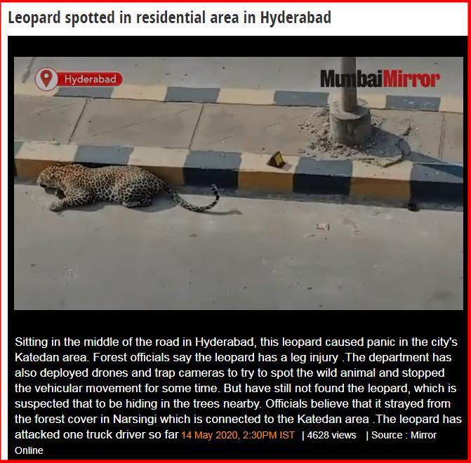 screenshot-mumbaimirror.indiatimes.com-2020.05.15-22_55_25.png