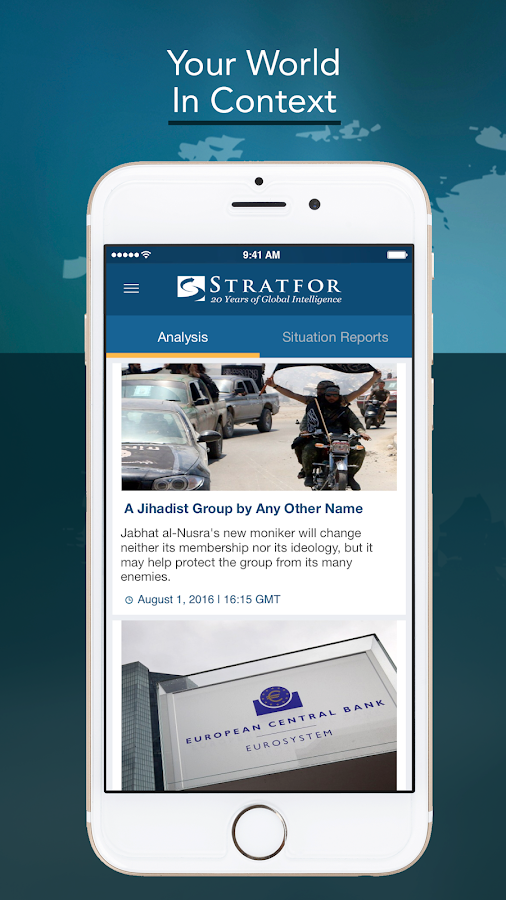 Stratfor- screenshot