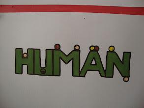 Photo: Logo Contest - exhibition
