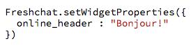 Online header code.png