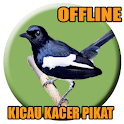 Suara Burung Kacer Pikat icon
