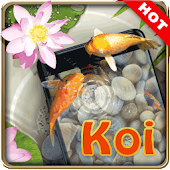 Koi pond 3D live wallpaper