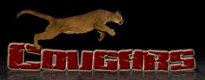 cougar leaping 2.jpg