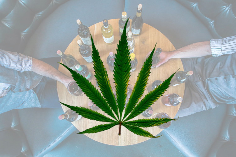Cannabis May Protect Alcohol Users From Liver Disease