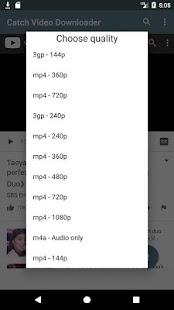 Catch Video Downloader - náhled