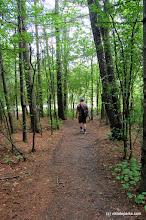 Photo: Trail at Grand Isle State Park