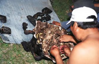 Photo: 03351 ナムジ家/ヤギ石焼料理準備/ボードック/首から下の皮を筒状に剥いだ中に解体した肉と焼石を詰めもどして、外側から火で焼く