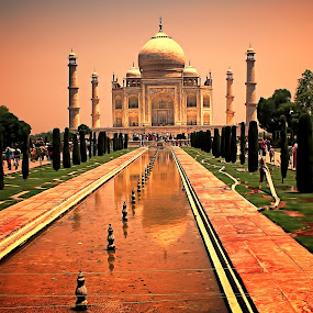 THE TAJ MAHAL, INDIA by Leon Zaragoza - Buildings & Architecture Statues & Monuments ( street and park, travel locations, city )