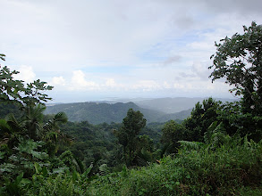 Photo: El Yunque