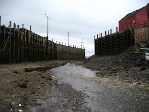 Photo: Limanın ağzı