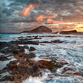 Makapu'u by Chuck Robinson - Landscapes Waterscapes ( water, ocean, sunrise, landscape, rocks, hawaii )
