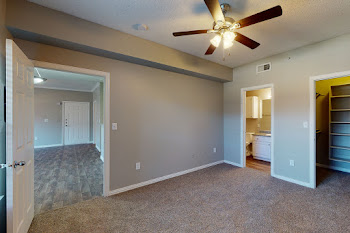 Bedroom with plush carpeting, brown walls, ceiling fan, and attached bathroom