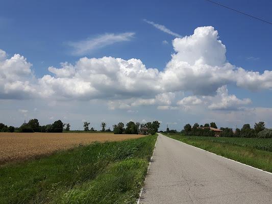 Strada di campagna di joysphoto