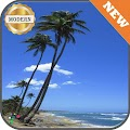 Beach Palm Trees Wallpaper APK