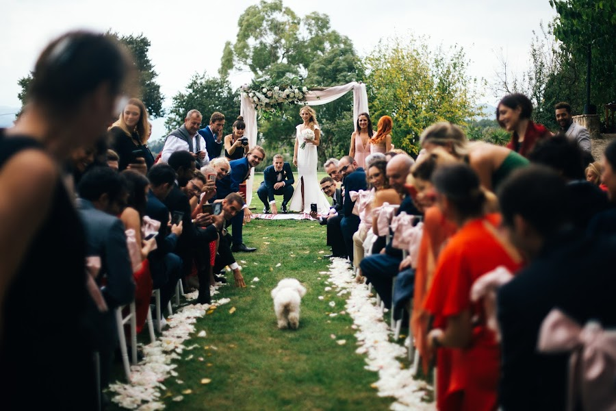 Wedding photographer Vera Fleisner (Soifer). Photo of 13.11.2018