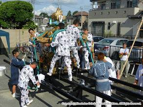 Photo: 【平成23年(2011) 本宮】  神輿に化粧紐など、仕上げの飾り付け。