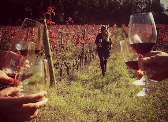 Ovunque, con veri amici e vero vino.  di letiziacaprettiphotography