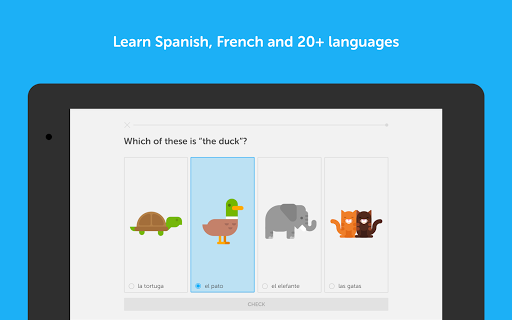 Duolingo: Learn Languages Free  screenshots 6