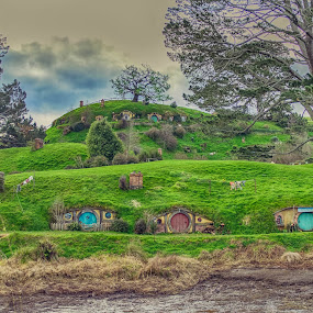 Hobbiton by HP Tang - Landscapes Travel ( new zealand, hobbiton )