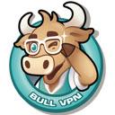 BullVPN - VPN Proxy Unlock Website & Security