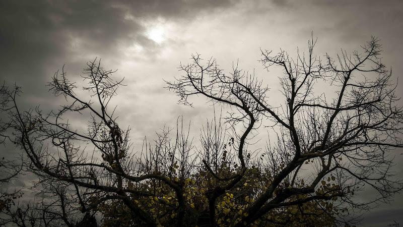 Corona d'autunno di Skarlet