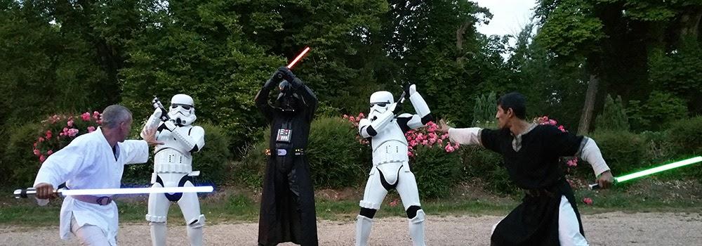 Show Star Wars theme : SW Destructuration. Acrobatie et cascades, combat et duel au sabre laser. Création : Alexis DIENNA, régleur de cascades. Escrime Cascade : https://www.escrimecascade.com/