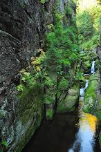 Photo: Kanion Kamieńczyka długości 100 m. Ściany mają wysokość do 25 metrów.
