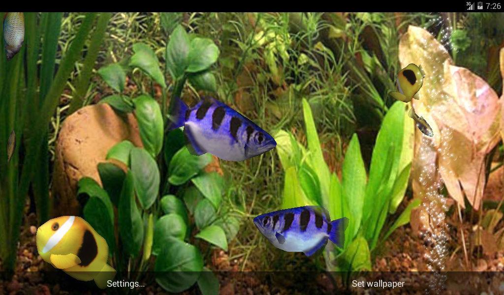 aquarium 3d live wallpaper pro