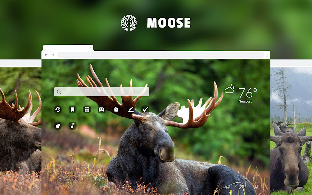 Moose HD Wallpaper New Tab Theme