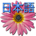 🌼 Japanese Dictionary icon