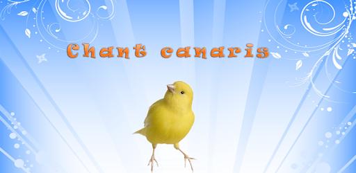CANARI TÉLÉCHARGER MP3 SONNERIE