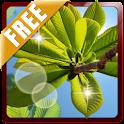 Nature Landscape 3D Free Live icon