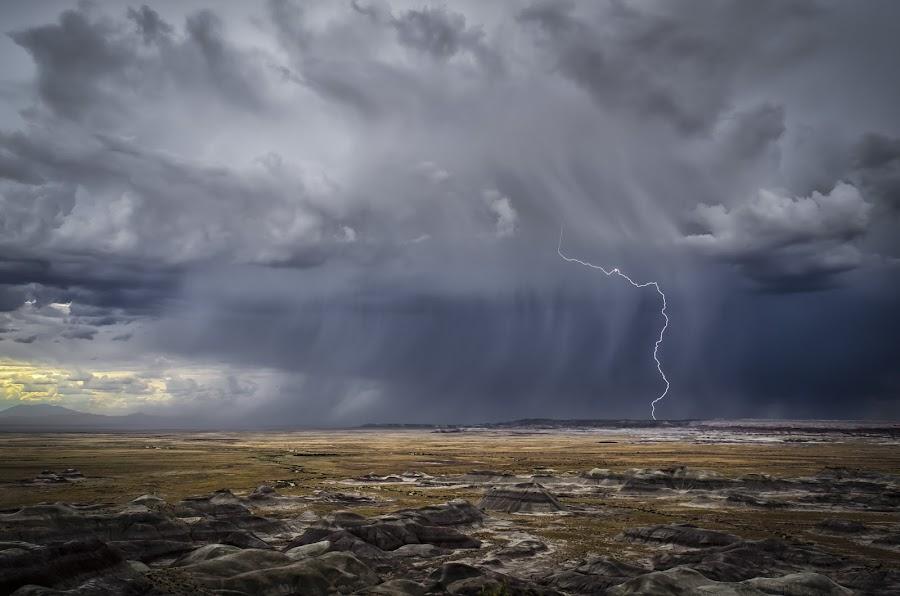 Painted Lightning by Scott Wood - Landscapes Weather ( clouds, lightning, desert, arizona, d7000, weather, storm chasing, storm, nikon, rain,  )