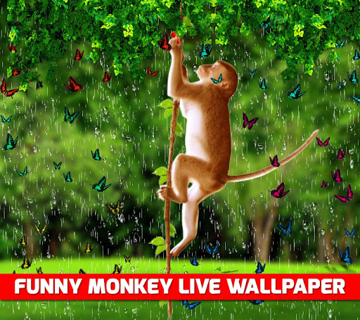 download funny monkey live wallpaper for pc