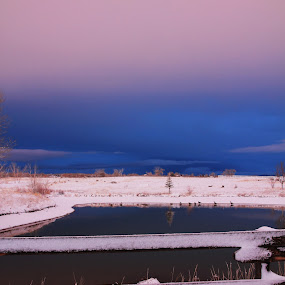 Purple Sunset by Liesl Ross Photos - Landscapes Sunsets & Sunrises ( clouds, fence, fog, snow, colorado, weather, pond )