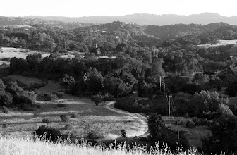 Photo: Requirement 1 (S-curve): The s-curve of the road emphasizes the layers of depth and the varying heights in the photograph. It's seen from just over the hill, as the small tufts of grass in the foreground represent the closest part of the scene. Then, the s-curved road lingers into the distance where it disappears in the dense forests, maybe continuing into the layers of mountains and hills behind it.    The photo was taken at sunset (at 1/80 and f/14), thus the long shadows and some brightly-lit spots. I edited in Photoshop and made it black-and-white to emphasize the range of whites, grays, and blacks. I also found that the road stood out more in b&w than in color.