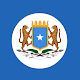 Somalia Constitution Download on Windows