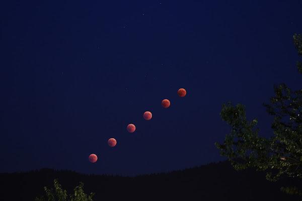 Eclissi di Luna. di Zio_Tibia