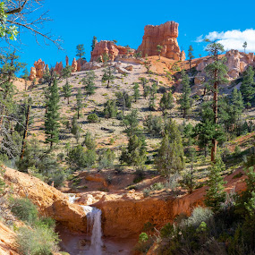 by Bert Templeton - Landscapes Deserts ( blue sky, bryce canyon, ditch, water, utah, red, rock, orange, bryce, canyon, hoodoo, tropic, stream, river,  )