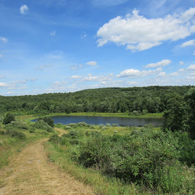 Way out  by Kelly Bowers - Transportation Roads ( #lostnfound #hike #pond #bass #road )
