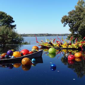 Infinity Pool by Debbie Jones - City,  Street & Park  Vistas ( arboreteum, chihuly, dallas, lake, boat,  )