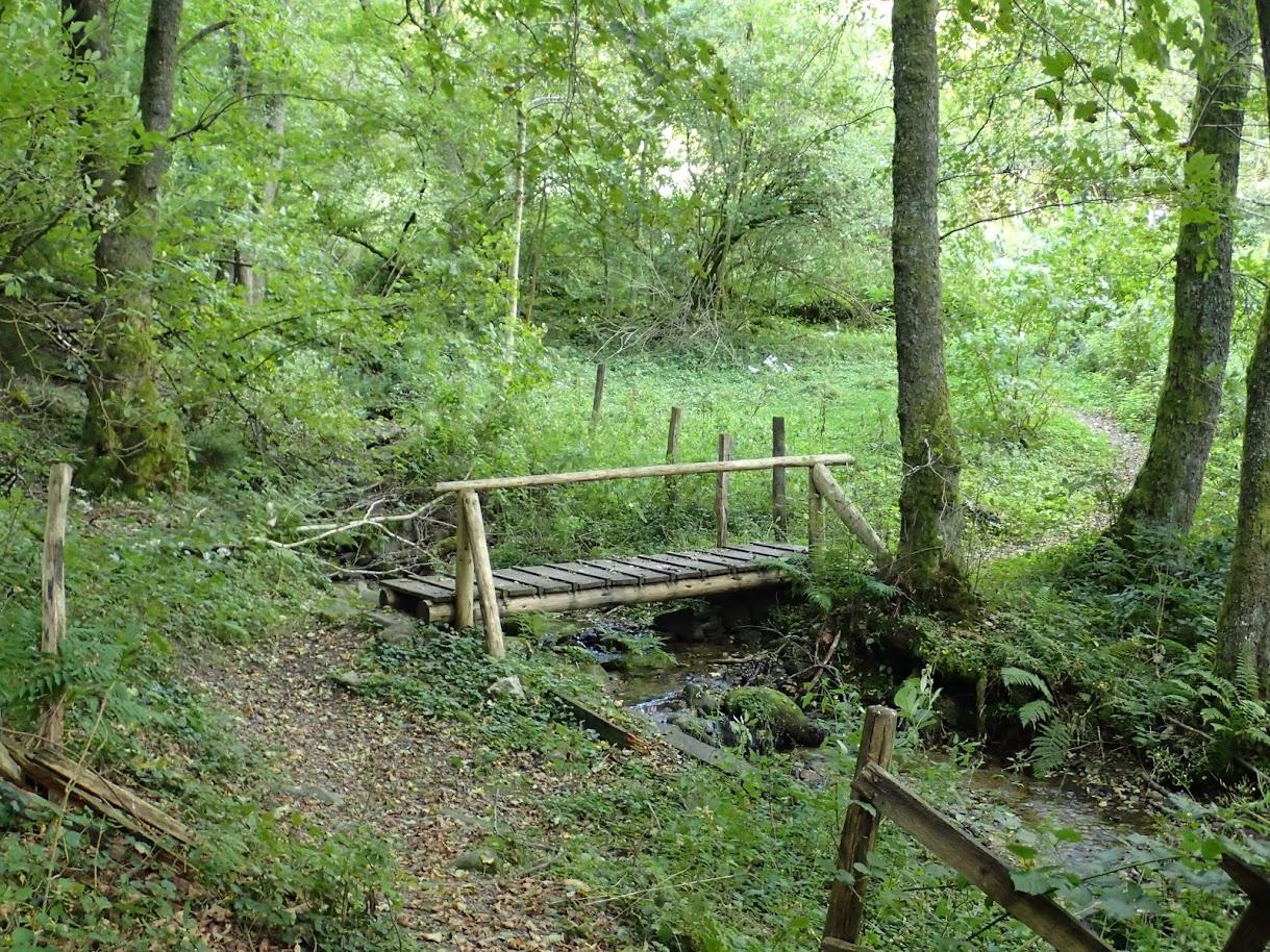 Cette petite passerelle permet d'enjamber le Wustengraben avant de rejoindre la Glasshütte