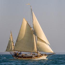 by Carl Albro - Transportation Boats ( sailboat, yawl )